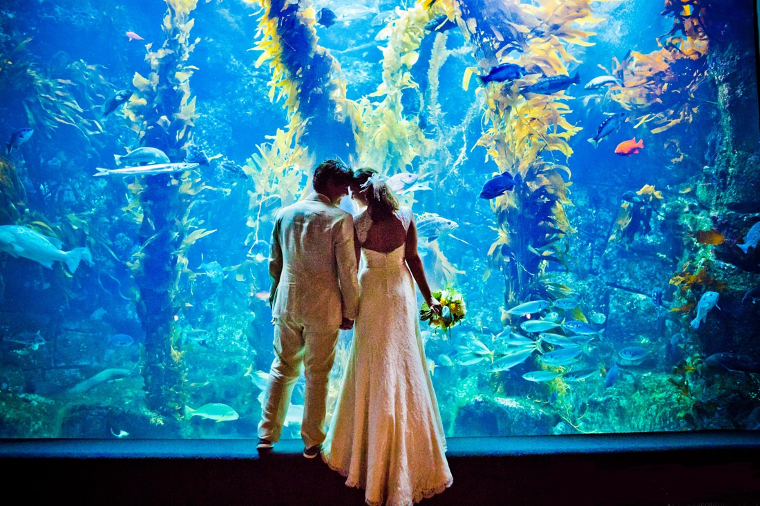 Wedding at Aquarium